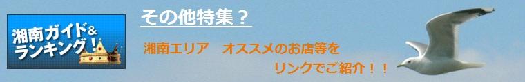 湘南 ガイド ランキング スタイル
